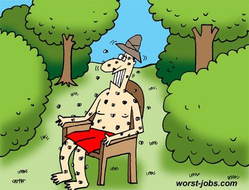 Mosquito-researcher